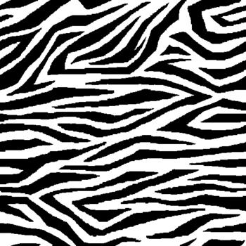 zebra01.png